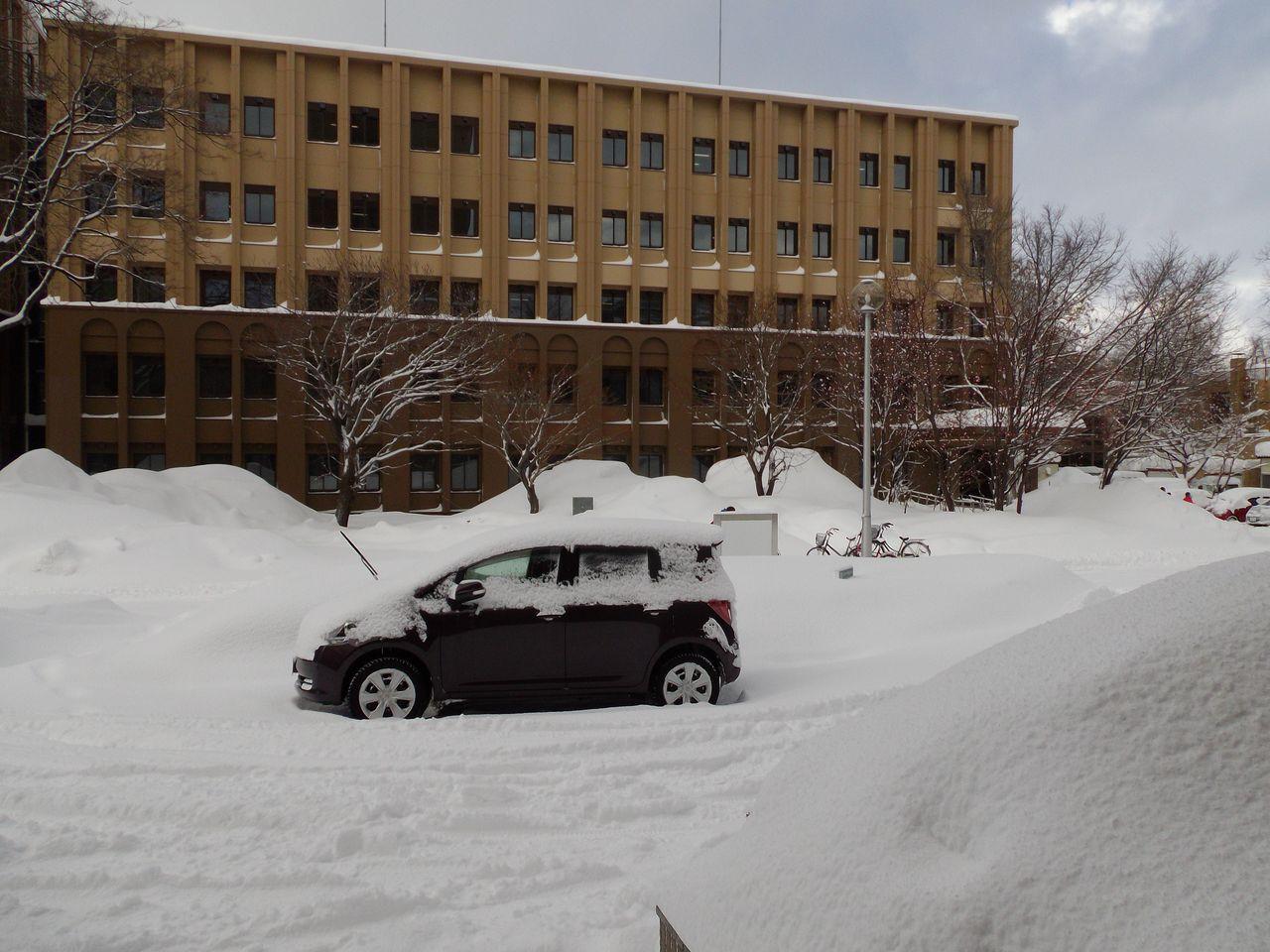 この冬、最悪の一日_c0025115_20255793.jpg