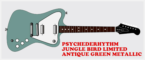 「Jungle Bird Limited #001」を3月に発売します!!!!!_e0053731_1621693.jpg