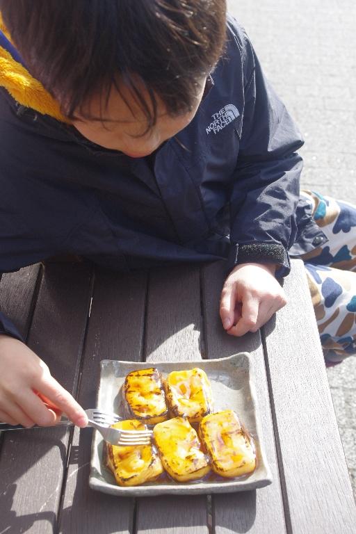 リニューアル途中★京都動物園_c0113733_11532100.jpg