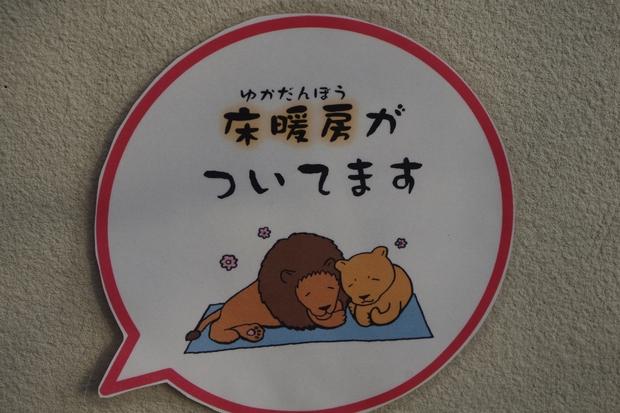 リニューアル途中★京都動物園_c0113733_1185324.jpg