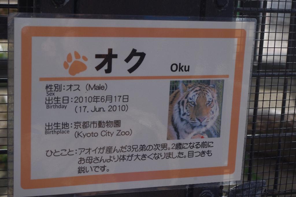 リニューアル途中★京都動物園_c0113733_1224652.jpg