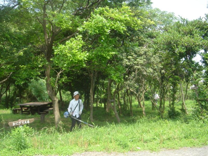 草刈り  in  うみべの森_c0108460_21251142.jpg