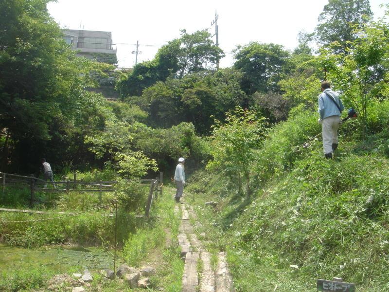 草刈り  in  うみべの森_c0108460_21251292.jpg