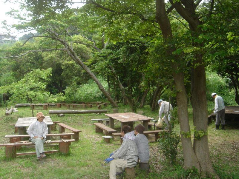 草刈り  in  うみべの森_c0108460_21305136.jpg