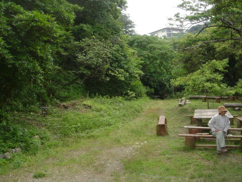 草刈り  in  うみべの森_c0108460_21305143.jpg