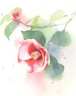 水彩画教室 椿 _f0176370_17272298.jpg