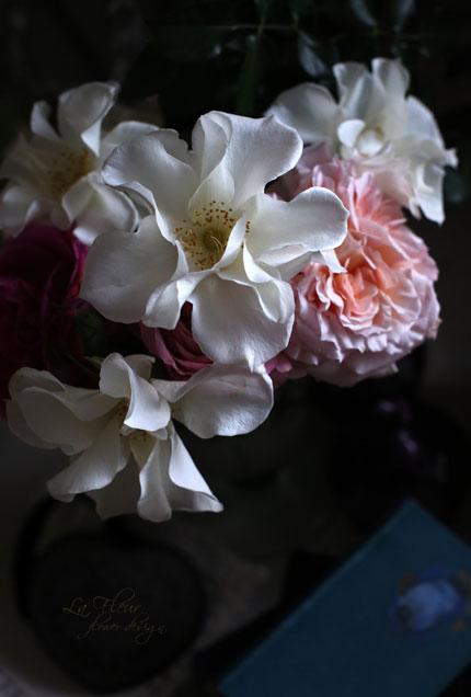 市川バラ園さんのバラで遊んでみましたよ~_f0127281_1241786.jpg