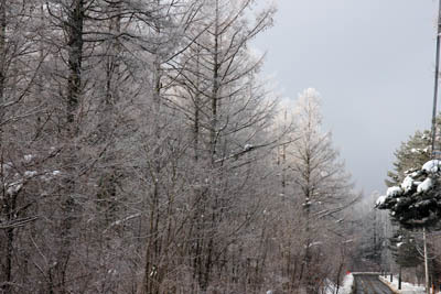 霧氷が美しい        -18_f0145483_17122170.jpg