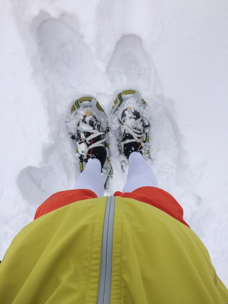 スノーシューランin北海道グリーンランドホワイトパーク_d0198793_15423212.jpg