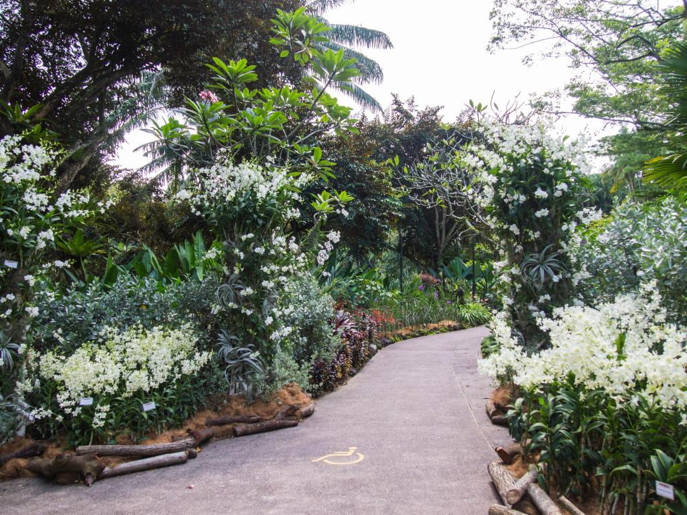 2014ジャワ島バリ島シンガポールvol.15~近未来都市シンガポール~_f0276498_15523126.jpg