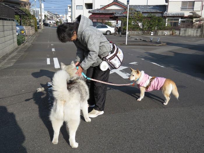 友よ!遊ぼう! (^o^)_c0049299_22223810.jpg