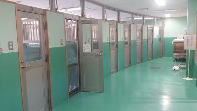 下関市動物愛護センター・動物ふれあいランド下関!_d0050503_2501417.jpg