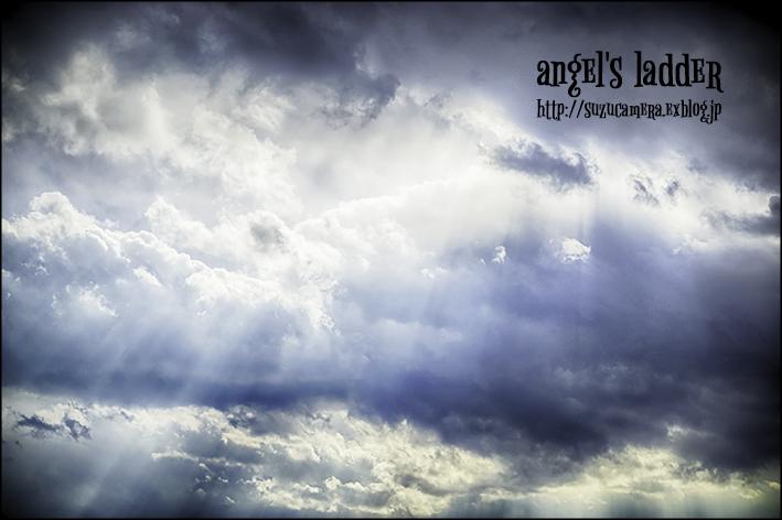 Angel\'s ladder_f0100215_23132695.jpg