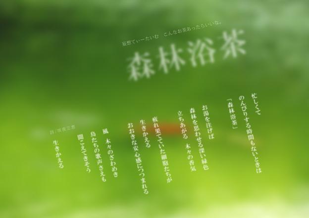 森林浴茶_a0329820_21560474.jpg