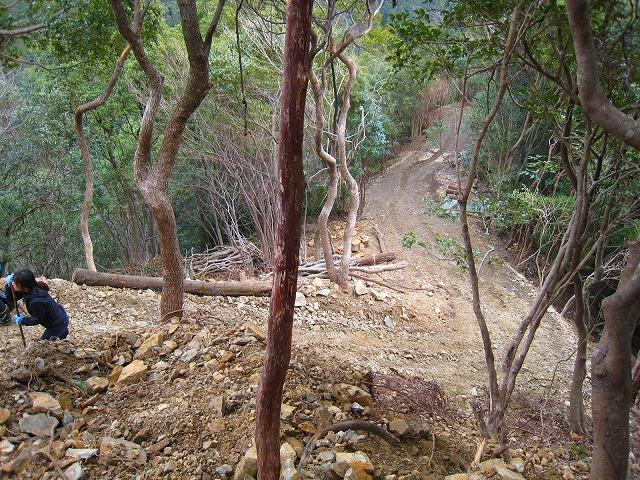 拡大する高知県西部の若手自伐型林業チーム_e0002820_22073404.jpg