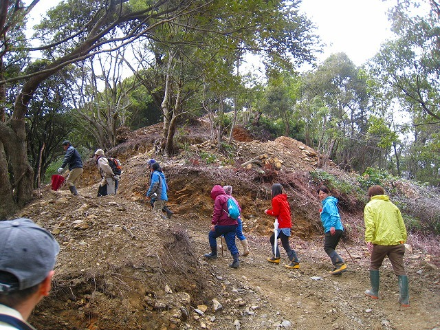 拡大する高知県西部の若手自伐型林業チーム_e0002820_22073514.jpg