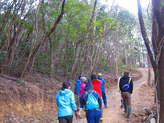 拡大する高知県西部の若手自伐型林業チーム_e0002820_22073516.jpg