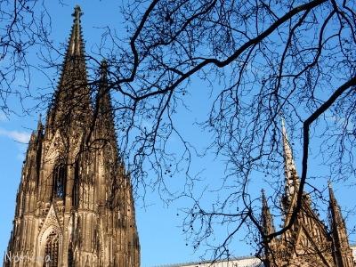 ベルギー・オランダの旅2~大聖堂、教会オンパレード_e0326953_11313743.jpg