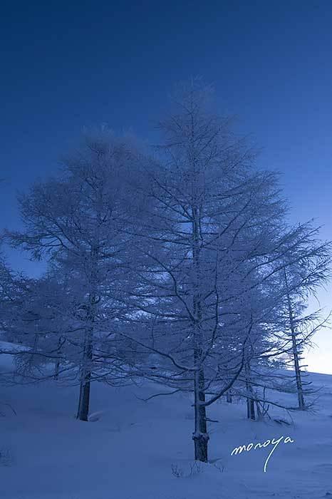 霧氷のような_c0085877_18034851.jpg