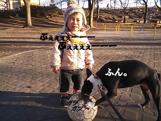 d0187891_14383151.jpg