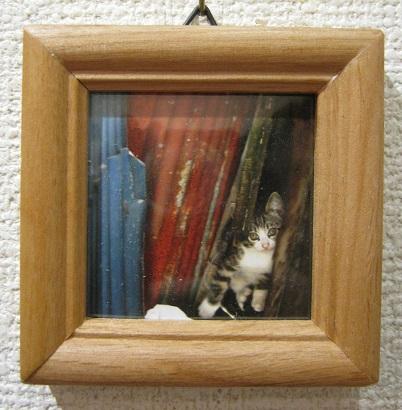 たまごの工房企画展 「 高円寺裏通り猫 展 」 その4_e0134502_16371684.jpg