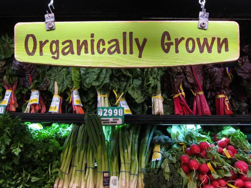 Organically in San Francisco_d0010432_2035235.jpg