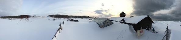 雪、雪、雪_f0354435_11590204.jpg