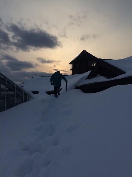 雪、雪、雪_f0354435_11591454.jpg