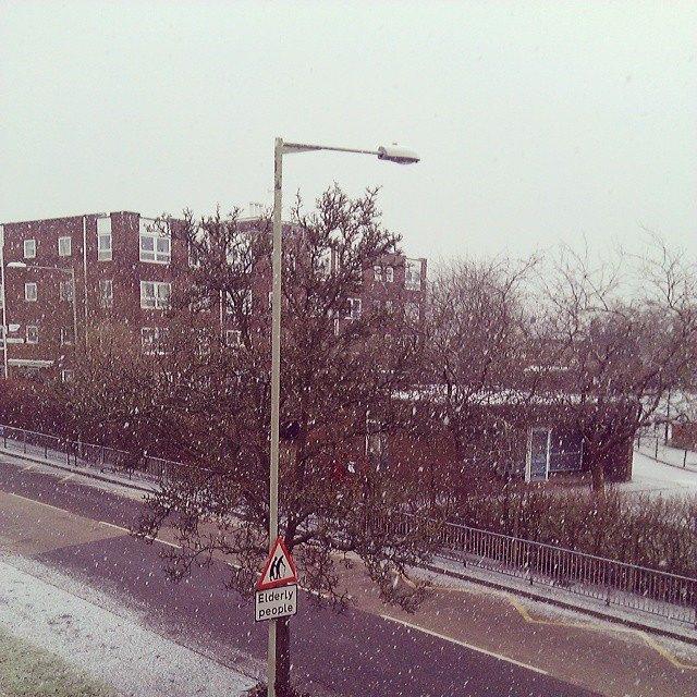 初雪♪_b0167736_6551876.jpg