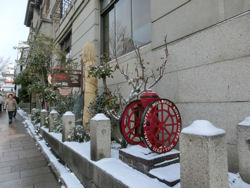 雪の善光寺_f0019247_16441269.jpg
