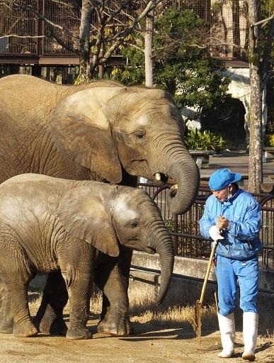 動物園でじっくり家族の姿を観察してみませんか!_e0272869_20565429.jpg