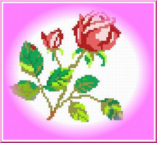 f0132006_1204210.jpg