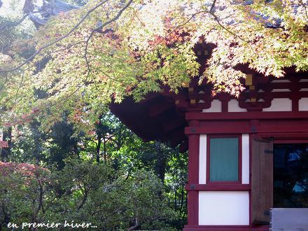東京庭園散歩・・・♪_c0098807_1904450.jpg