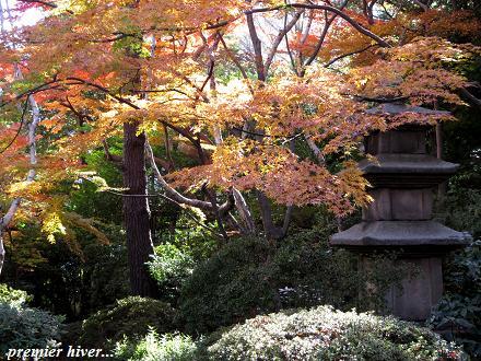 東京庭園散歩・・・♪_c0098807_1915999.jpg