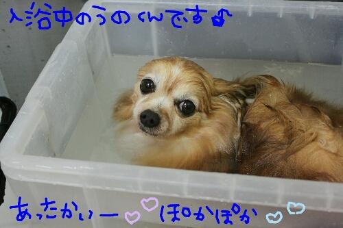 b0130018_01749.jpg