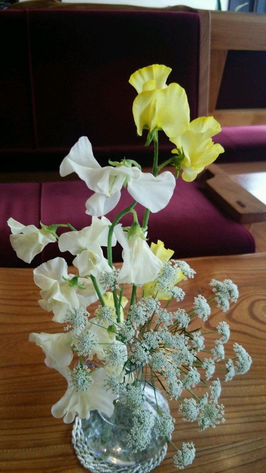 春の花_c0213830_1345199.jpg