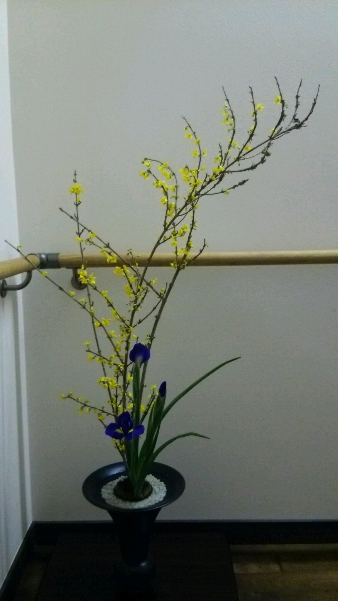 春の花_c0213830_13454065.jpg