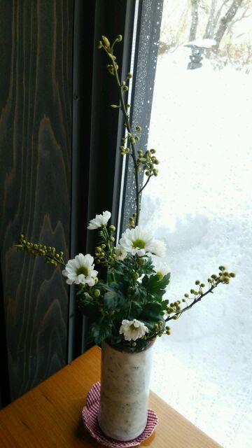 春の花_c0213830_13454091.jpg