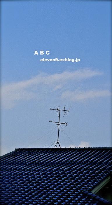 Blue roof _f0315034_13123932.jpg