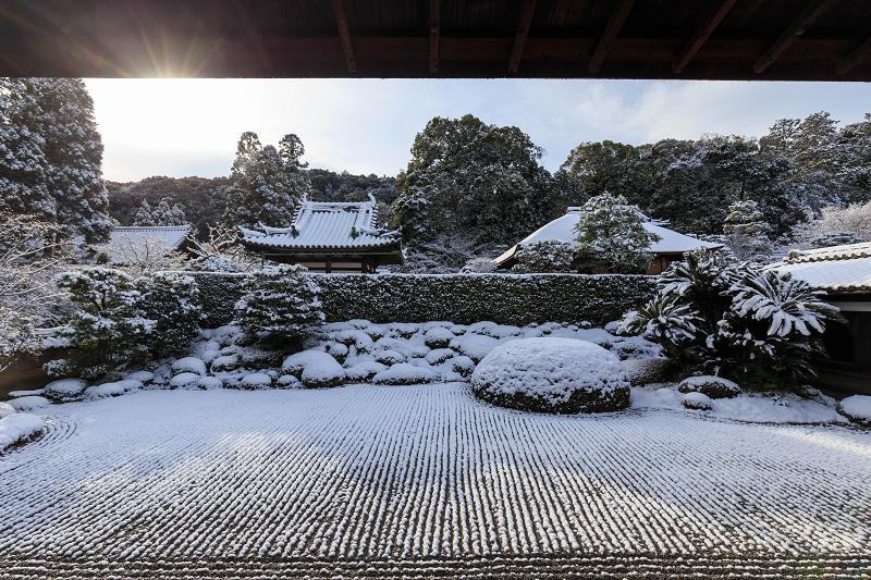 酬恩庵・一休寺の雪景色(方丈庭園編)_f0155048_20415659.jpg