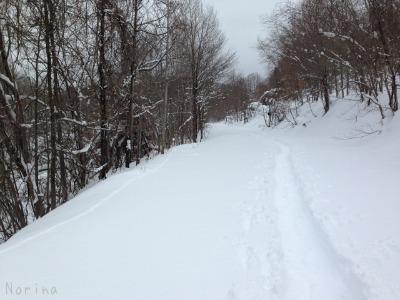 この冬 初スノーシュー_e0326953_1411012.jpg