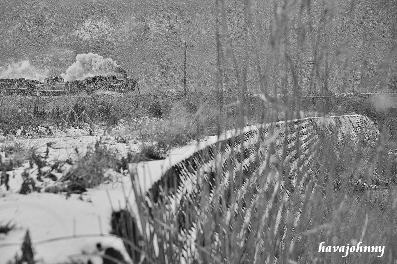 雪フラシ現る~SL津和野稲成号20~_c0173762_2224876.jpg