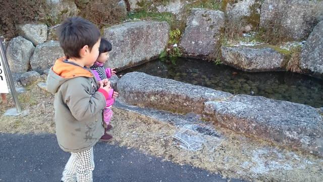 平成27年1月18日潮見の森で伊勢湾を望む?!_c0155364_0322674.jpg