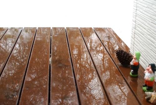 1月なのに雨。_c0110869_13481441.jpg