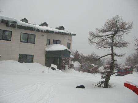吹雪の朝_e0120896_07562848.jpg