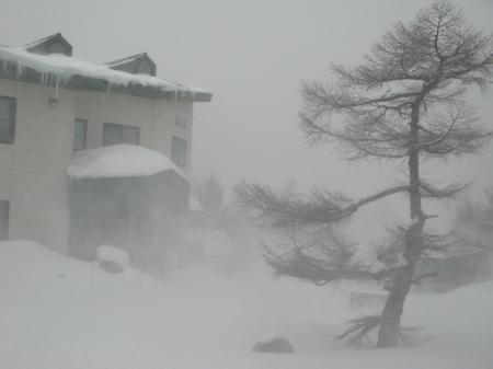 吹雪の朝_e0120896_07564670.jpg