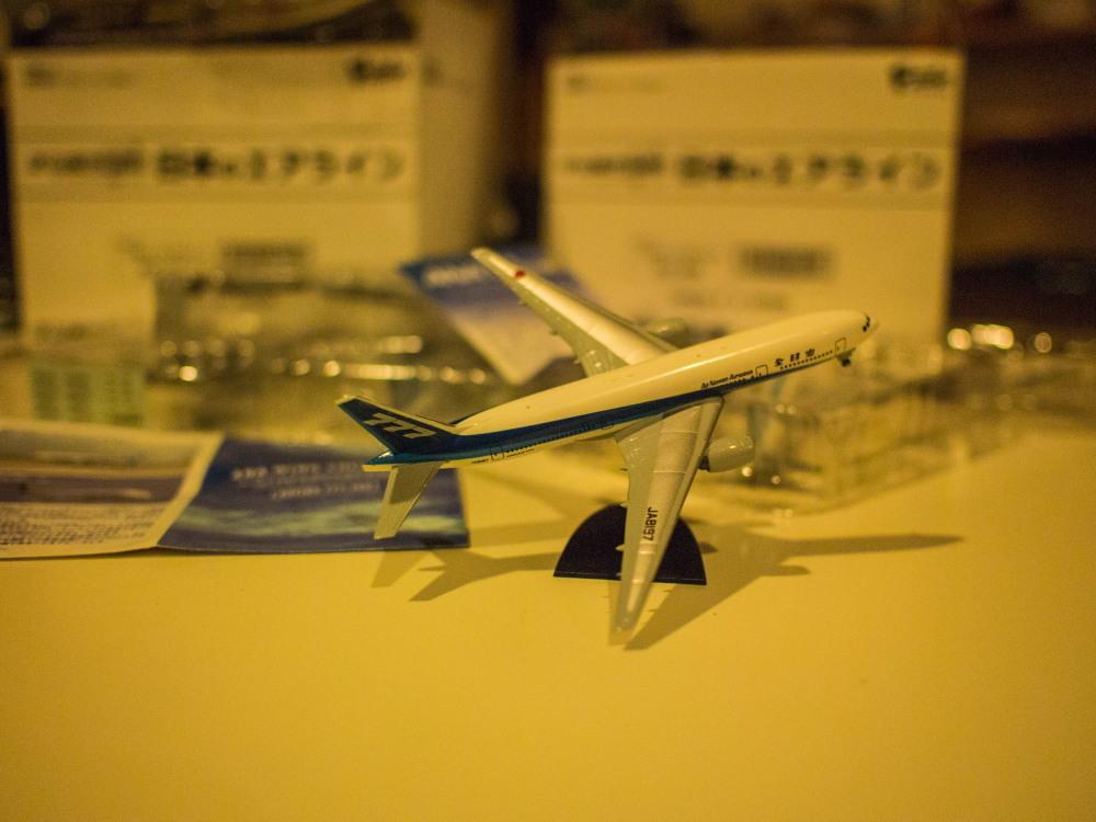 """かわいい""""カラ類""""と・・お客さんから頂いた""""飛行機の模型""""_f0276498_10561798.jpg"""
