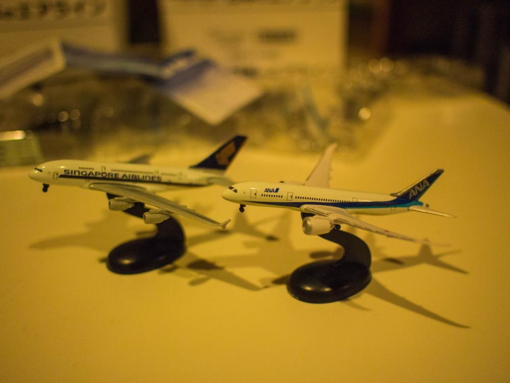 """かわいい""""カラ類""""と・・お客さんから頂いた""""飛行機の模型""""_f0276498_10565473.jpg"""
