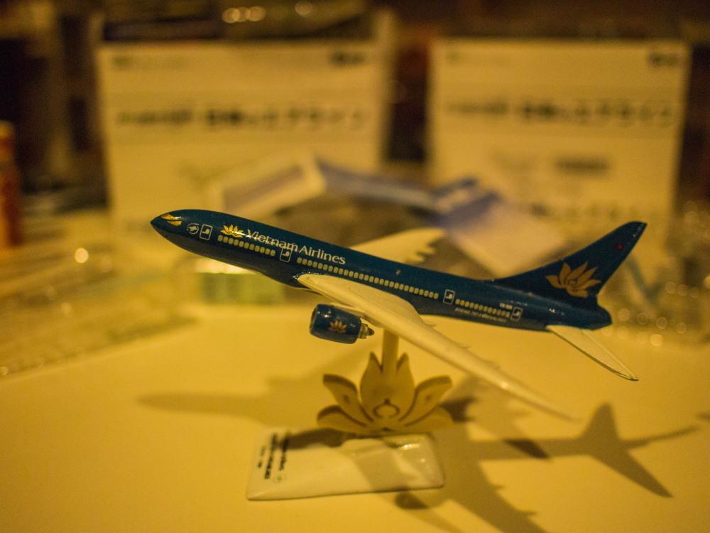 """かわいい""""カラ類""""と・・お客さんから頂いた""""飛行機の模型""""_f0276498_10570541.jpg"""
