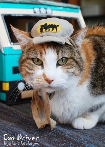クロネコ運転手さんに帽子を支給_b0253205_02475666.jpg